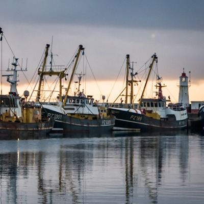 Beam trawlers in Newlyn Harbour (Photo by Laurence Hartwell)