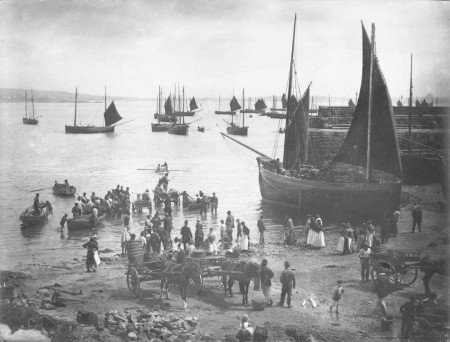 Historic photo of fish being landing at Newlyn Old Quay (Penlee House Collection)