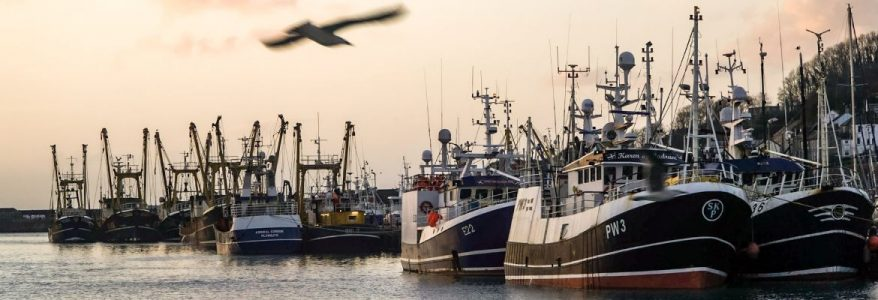 Fishing boats in Newlyn Harbour (Photo by Laurence Hartwell)