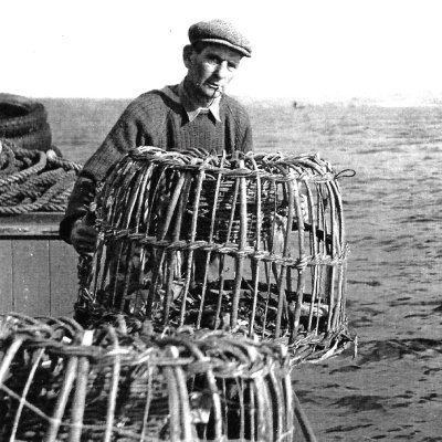 Historic photo of 'shooting' lobster pots of Newlyn (Billy Stevenson Collection)