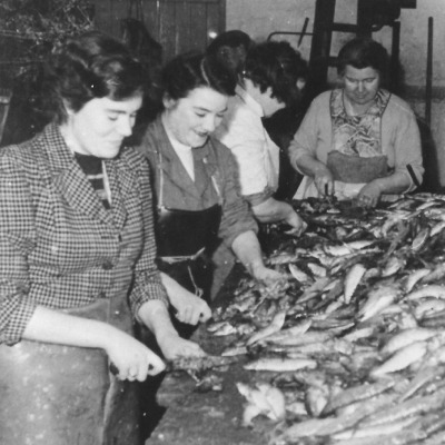 Women preparing fish in Newlyn Shippams factory (Photo from Billy Stevenson Collection)