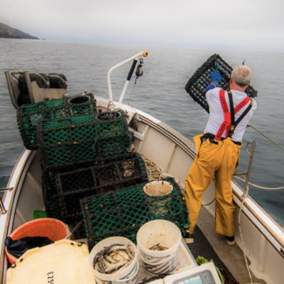 'Shooting' lobster pots off Newlyn (photo by Laurence Hartwell)